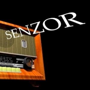 SenzorRadiosmall