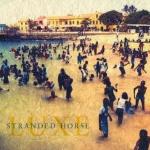 strandedhorse-luxe