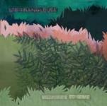 letrangleuse-memoriestocome