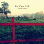 thewhitebirch-theweightofspring