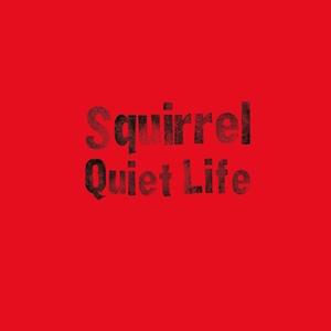 Squirrel - Quiet Life